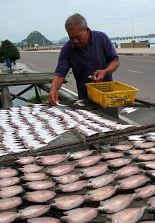 Fisherman, Prachuap Khiri Khan