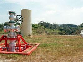 Autorizan geotermia en el Bosque La Primavera