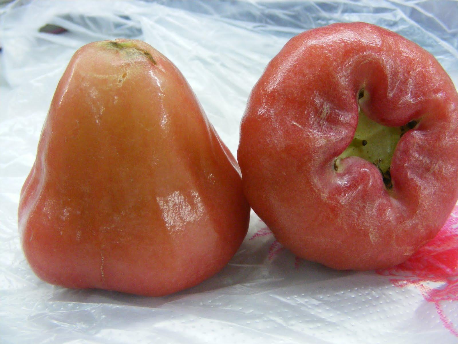 A Scot in Taiwan: Taiwan's Wax Apple  YUM