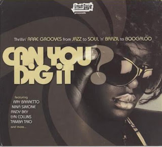 Various Artists - Can You Dig It (2007)