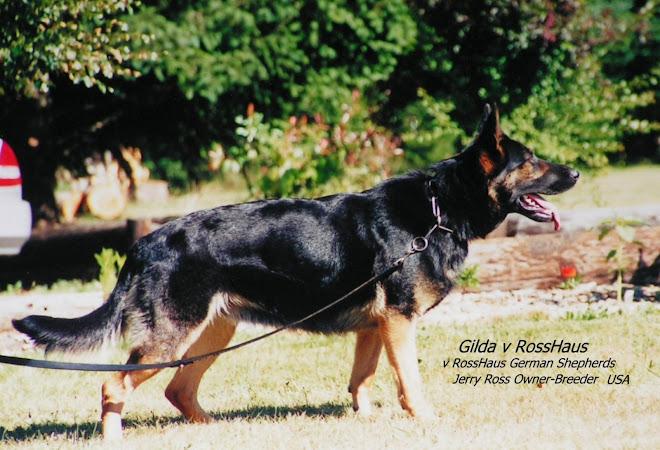 Gilde v RossHaus
