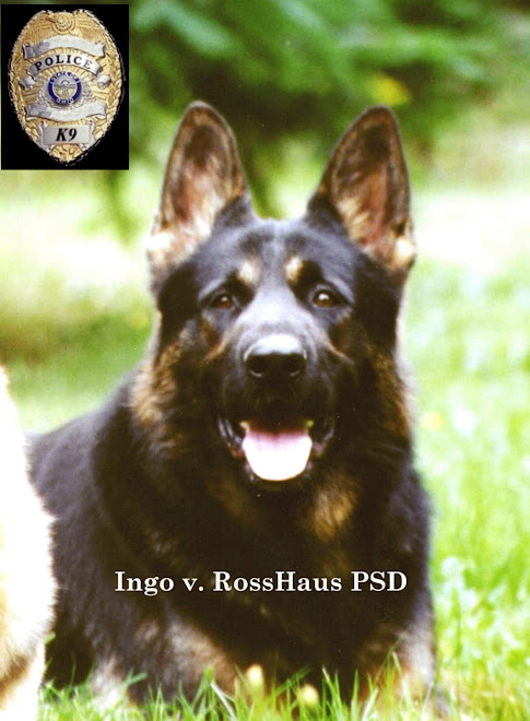 Ingo v RossHaus  PSD-K9