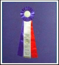 Best of Breed, Cornwall District Kennel Club, 07