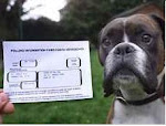 Charlie and his ballot