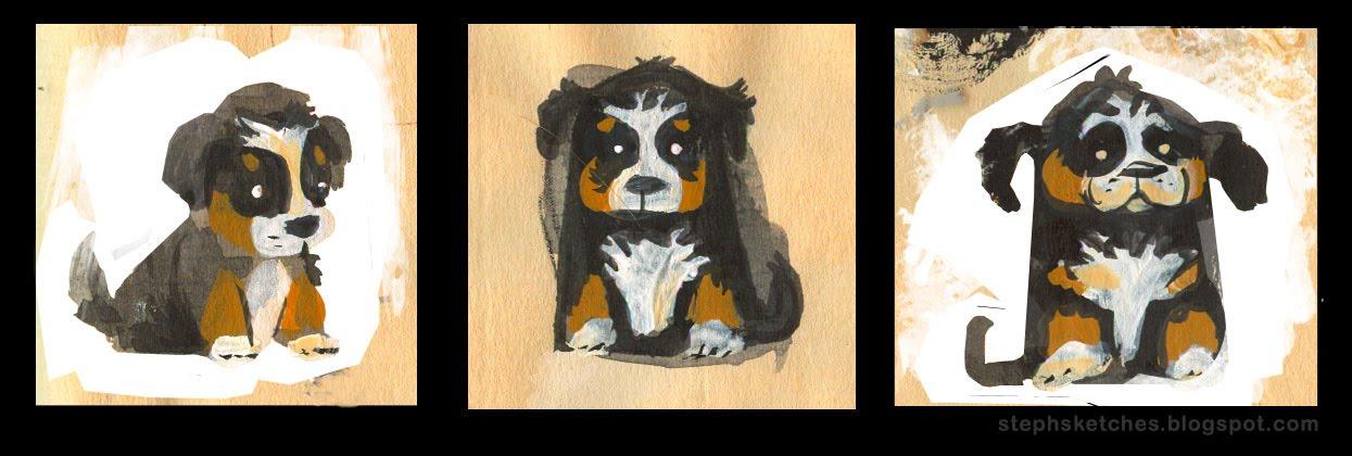 Steph Laberis Bernese Mountain Dog Puppy Moxie