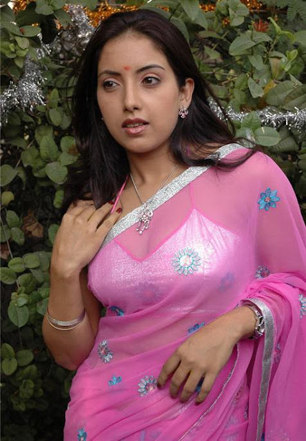 Telugu Aunty Hot Photos Telugu Mallu Aunty-9093
