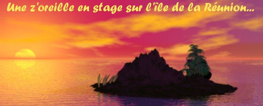 Une z'oreille en stage sur l'île de la Réunion !