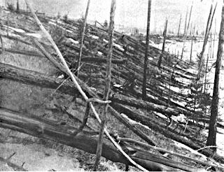 Tunguska trees felled