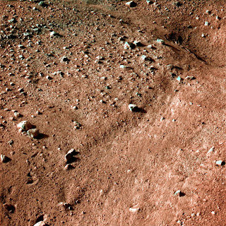 Polygons in the soil