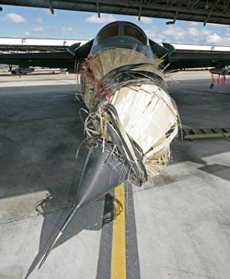 F-111 dañado por pelícano