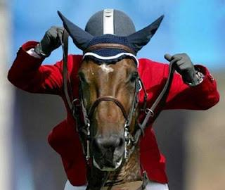 kudaku lari kencang