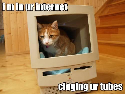 [i-m-in-ur-internet-cloging-ur-tubes.jpg]