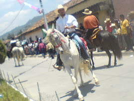 Desfile Hípico