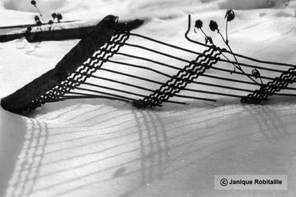 janique robitaille artiste artisane photographie artistique noir et blanc. Black Bedroom Furniture Sets. Home Design Ideas
