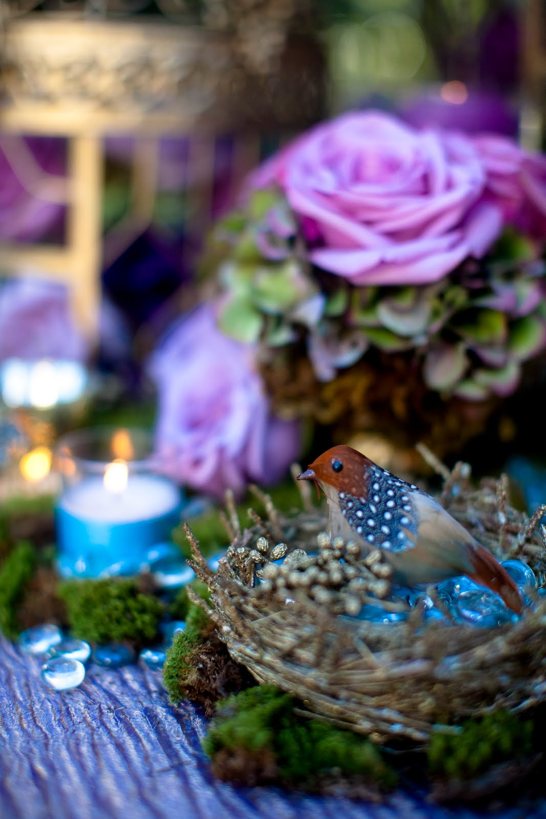 Enchanted Garden: Bride And Bloom Magazine Feature