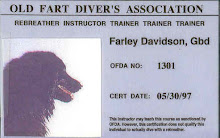 Farley Davidson DD
