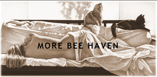 More Bee Haven
