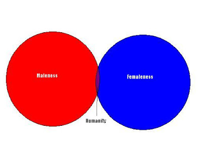 autist\u0027s corner two venn diagrams VIN Diagram that line of argument, i present these two venn diagrams the first one represents the typical conservative view of the relation between men and women