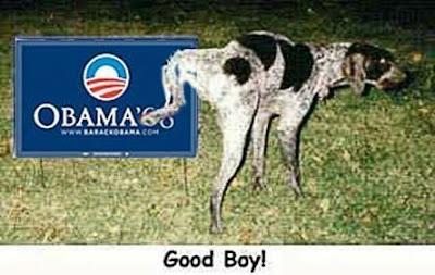 http://bp1.blogger.com/_CKtfvysJXco/SIOFxaR7NHI/AAAAAAAAAEk/nvoDmlaE4hU/s400/obama+dog.jpeg