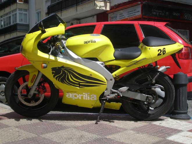 Rotulación de Motos