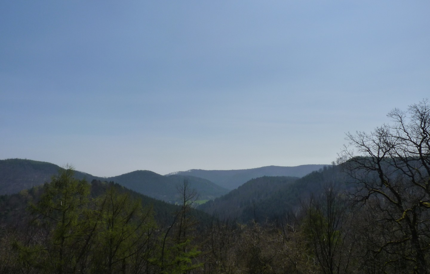 Dispatch from Metz: The Northern Vosges Mountains
