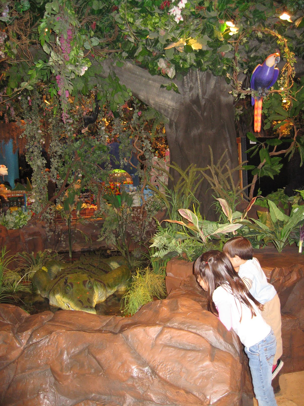 This is a graphic of Decisive Rainforest Cafe Printable Coupon