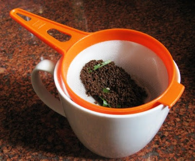 Image result for chai patti