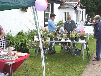 Scottish-Highlands-Nursery-Plants