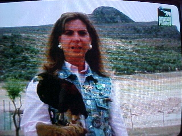 ESTE PROGRAMA SE TRANSMITIO DE NOVIEMBRE 2001 A NOVIEMBRE 2007