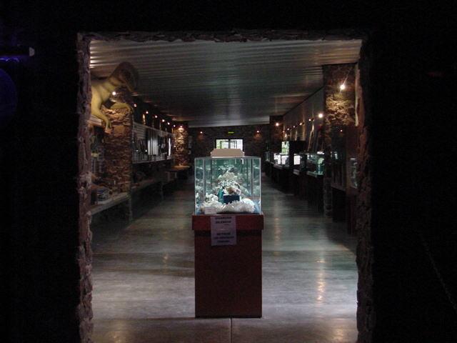 "MUSEO DE HISTORIA NATURAL ""DON JOSE VILET BRULLET"""