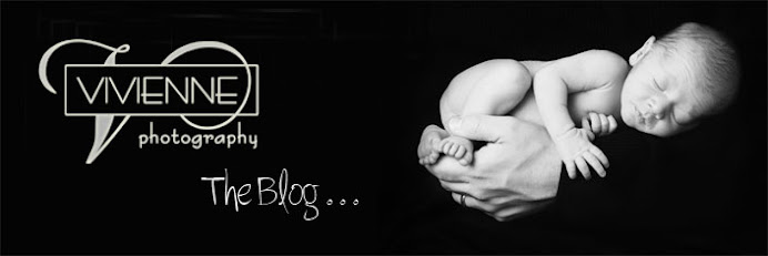 Vivienne Photography ~ Annapolis, MD ~  Maternity, Newborn, Baby's First Year Plan and beyond . . .