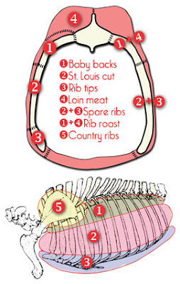 rib+cuts country style ribs diagram trusted schematic diagrams \u2022