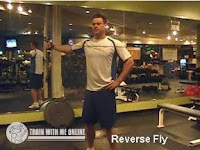Reverse Fly with cable and weights