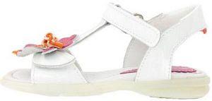 Lelli Kelly Shoe Sizes