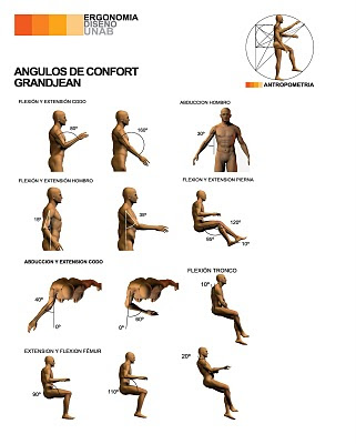 Dibujo y creaci n el canon del cuerpo humano ii for Medidas ergonomicas del cuerpo humano