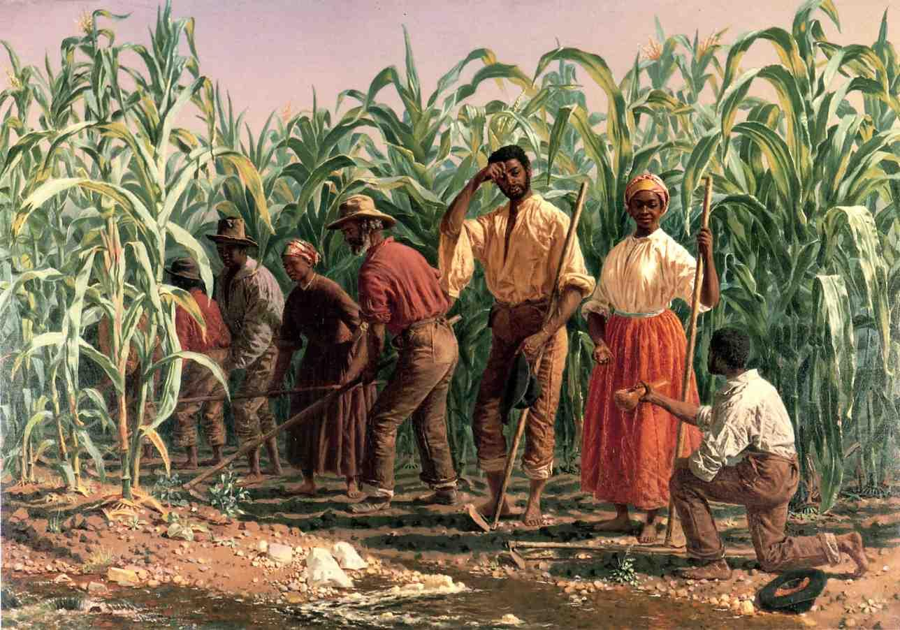 african and native american slavery essay One of the most obscure topics in american history is the over 300 year history of the native american slave trade.