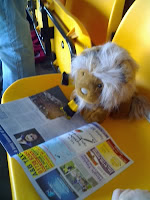 Lionel reading up on Mister Eltons visit to McDiarmid Park in the summer