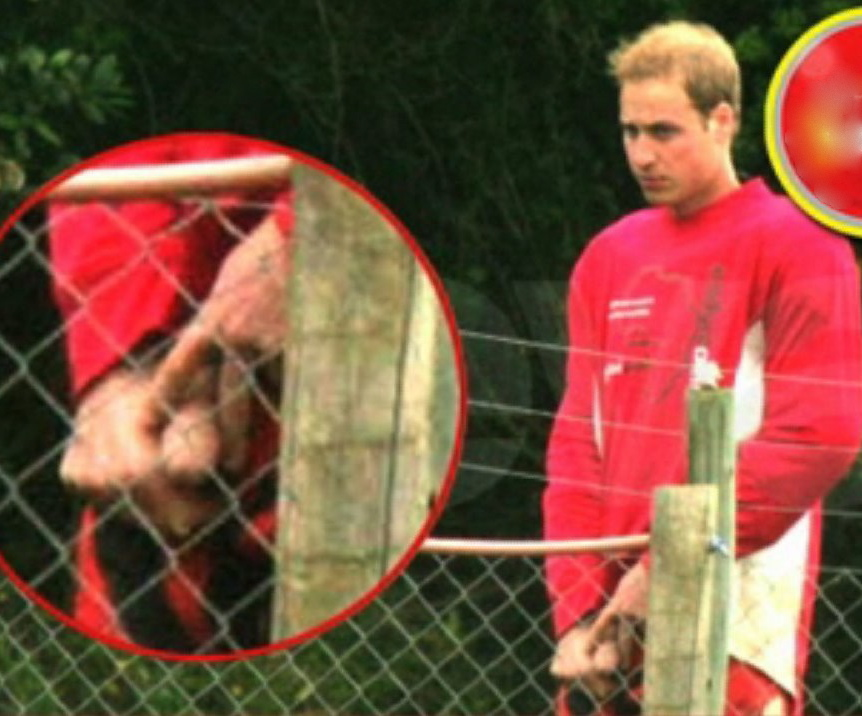 Prince William Penis Picture 112