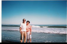 Playas de Arauco