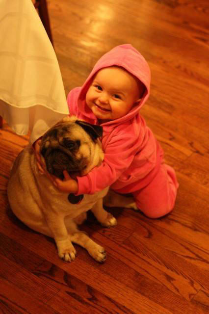 Actress Stills Cute Baby With Vodafone Dog