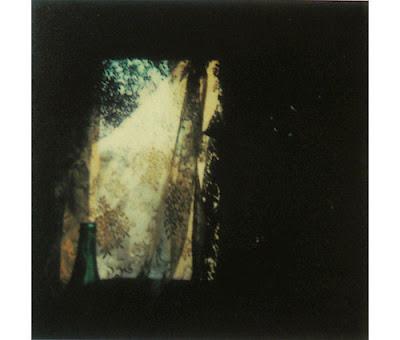 Automatism Tarkovsky S Polaroids