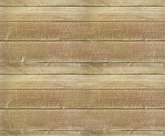 [Plank2_t.jpg]