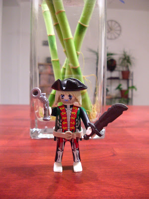 Playmobils : nouvel arrivage pirate
