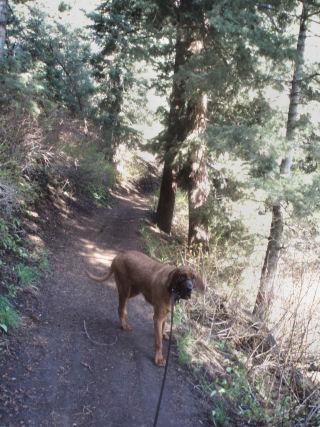 [hike2]