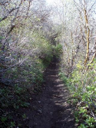 [hike5]