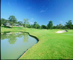 Kalau Mau main Golf Disini Aja