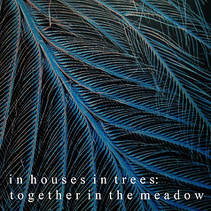 In Houses In Trees - 2008 - Together in the Meadow