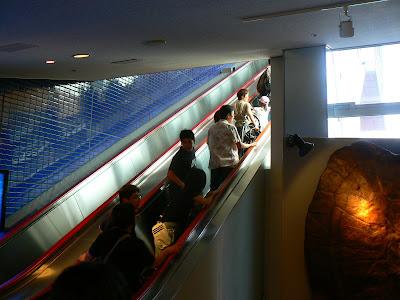 Imagini Japonia: Aquarium Osaka intrare