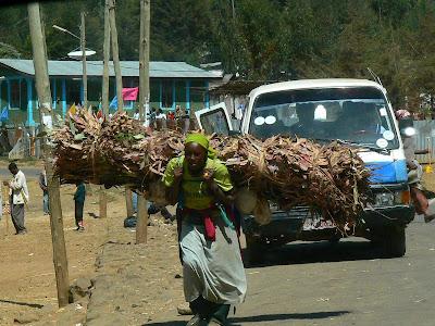 Imagini Etiopia: caratoarele de lemne Entoto -  Addis Ababa
