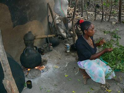 Imagini Etiopia: sat Ari, producatoare bere